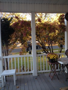 Autumn was well underway in upstate New York.  A view from our Airbnb rental porch.